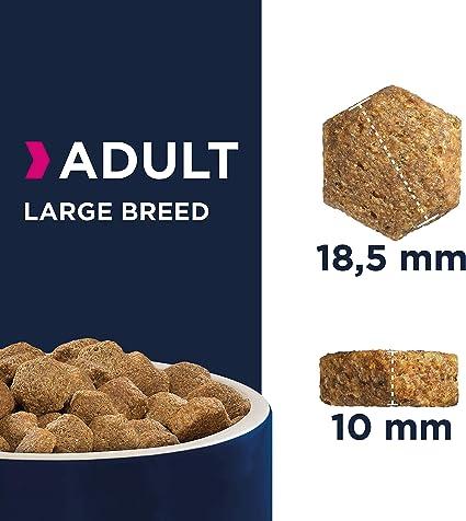 Eukanuba Alimento seco para perros adultos de razas grandes con pollo 12 kg