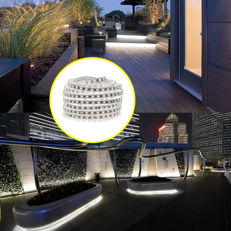 AMANEER LED Rope Lights 50ft Flat Flexible Light Strip Daylight White Water Resistant for Both
