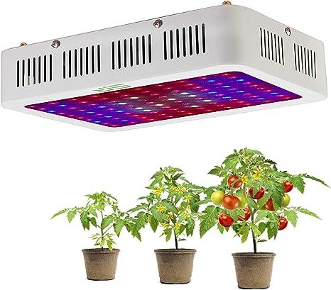 600/W doble chips Full Spectrum Planta Luz Rojo /& Azul L/ámpara LED Bombilla de Crecimiento Planta para plantas y verduras//Flores y Plantas Invernadero 10/W ledes EU Plug L/ámpara LED plantas