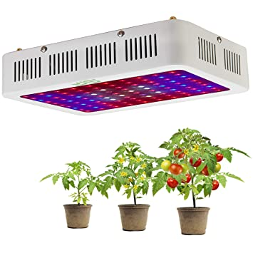 Lámpara LED plantas, 1000 W doble chips Full Spectrum Planta ...