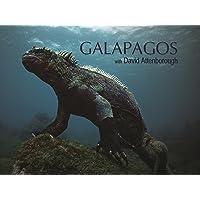 Deals on Galapagos with David Attenborough: Season 1 HD Digital