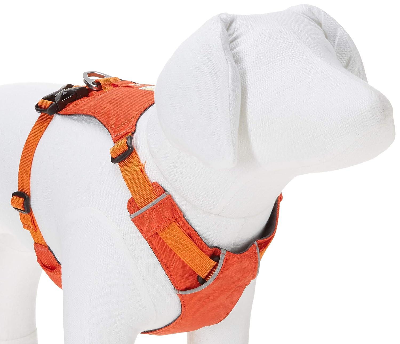 Ruffwear Leichtgewicht-Hundegeschirr Gr/ö/ßenverstellbar Miniatur-Hunderassen