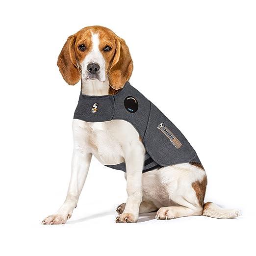 4 opinioni per Thundershirt cappotto per aiutare i cani a combattere l'ansia