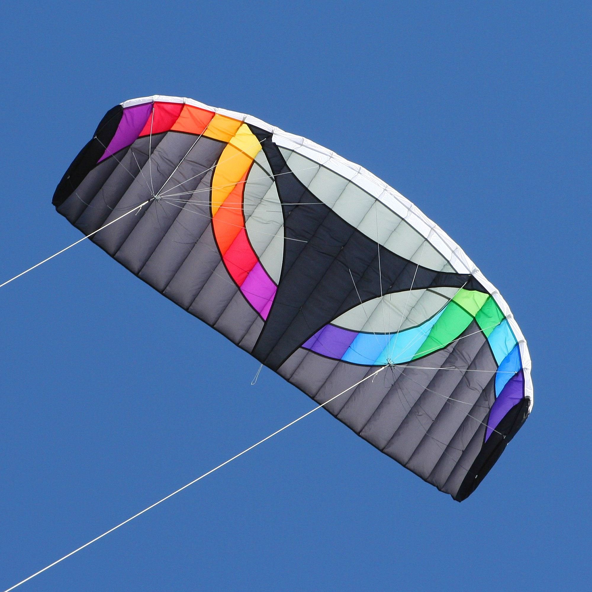 Into The Wind Bulldog II Dual line Stunt Kite by Into The Wind
