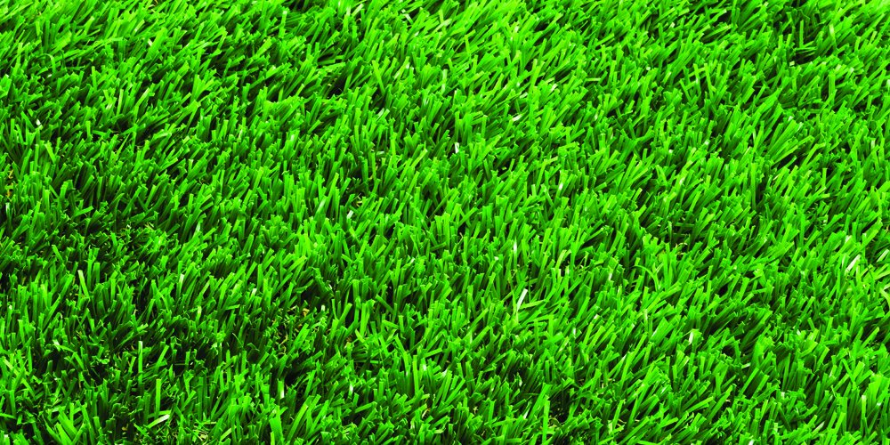 Bermuda Grass Blend (1000 sq. ft.) by Nature's Seed