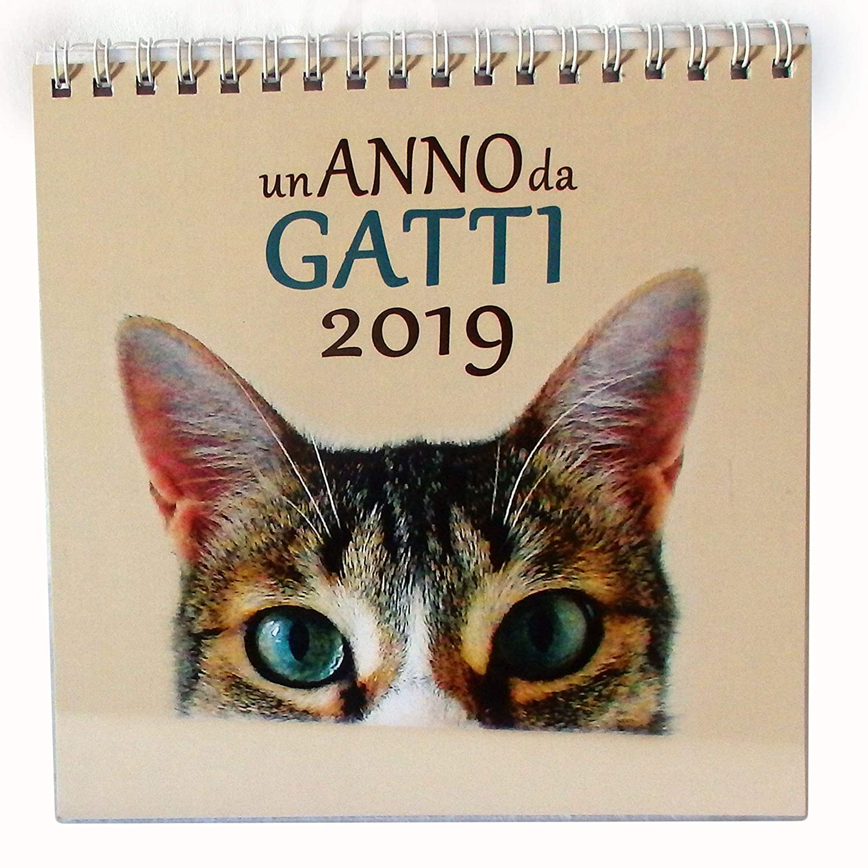 Calendario mensile da scrivania UN ANNO DA GATTI 2019