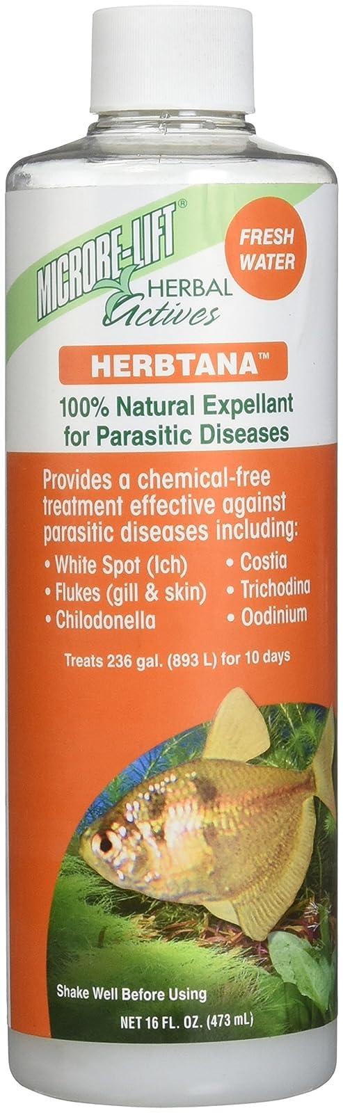 Ecological Labs AEL20912 Microbe Lift Herbtana Fresh 971046 - 1