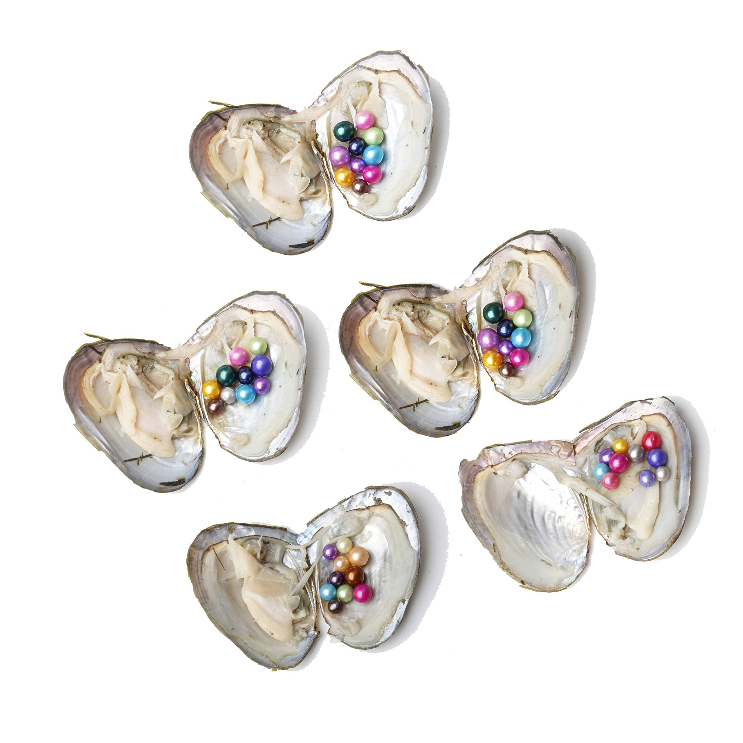 JNMM 5PC Pearl Oysters Freshwater Cultured with 10 Mix Color Round Love Wish Oysters with Pearls Inside 10 Colors (7-8mm), Valentines Mothers Day Birthday Gifts Pearl Wedding Party (Total 50 Pearls) by JNMM (Image #2)