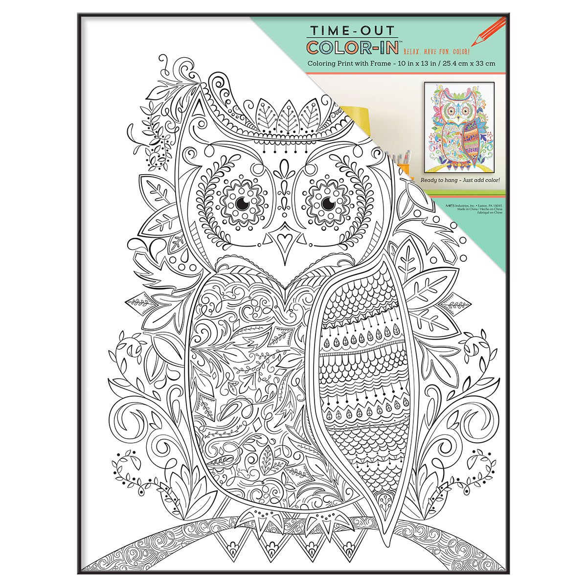 MCS Time-Out Color-In Framed Adult Coloring Page with Adventurer Sentiment, Includes Format Frame, 10 by 13-Inch MCS Industries 65632