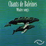 Chants de baleines (One Full Hour of Whales Songs)