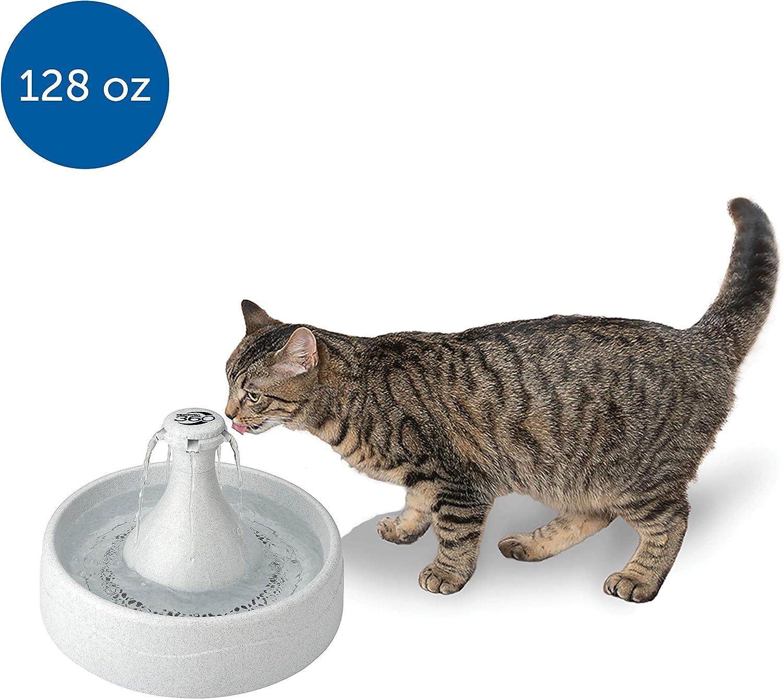 PetSafe Drinkwell - Fuente para Mascotas, 360, plástico