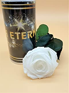 Rosa eterna Blanca Extra. Gratis TU ENVÍO. Rosa Blanca eterna ...