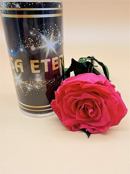 Rosa eterna preservada Color Rosa Premiun. Gratis TU ENVÍO. Rosa preservada eterna Color Rosa Premiun. Tubo de conservación de 55 cm. Hecho en España.: Amazon.es: Hogar