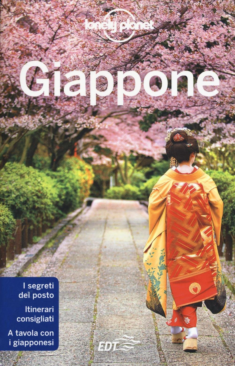 Giappone Copertina flessibile – 25 feb 2016 Giappone Lonely Planet EDT 8859225426 GEOGRAFIA GENERALE. VIAGGI