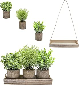 Hampton Squares Artificial Plants Set of 3 Rustic Decor Indoor Eucalyptus Plants Faux Rosemary for Hanging Dinning Room Table Wooden Box Home Office Desk Fake Plant Fake Succulent Centerpieces