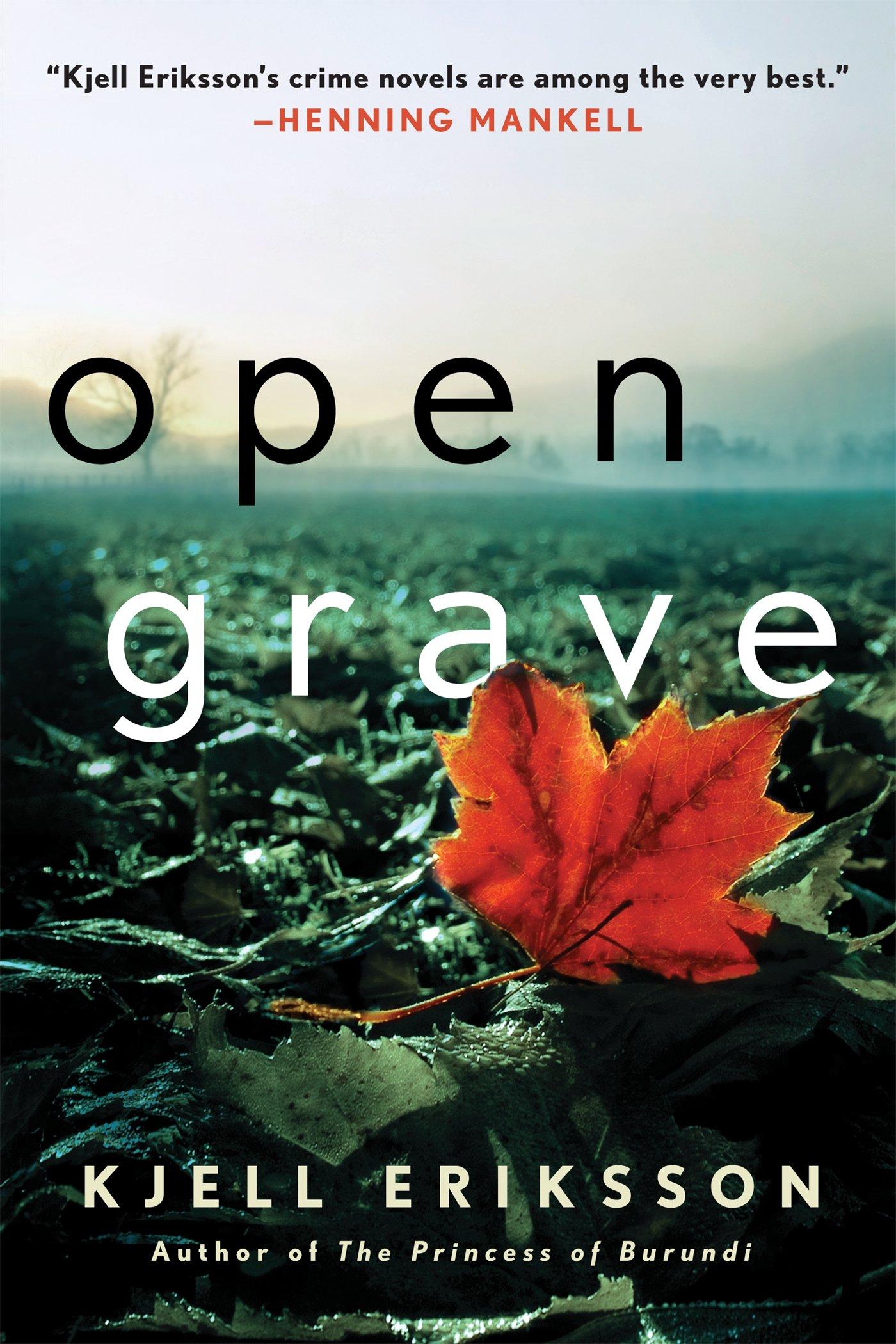 Open Grave (Ann Lindell Mysteries)