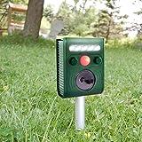 Répulsif à ultrasons ,Drillpro Pest Repeller solaire/Ultrasonique Fréquence réglable, 5 Mode Repousser pour Chat,Écureuil,Cerf,Moufette,Chipmunk,lapin,Et autres animaux indésirables(batterie incluse)