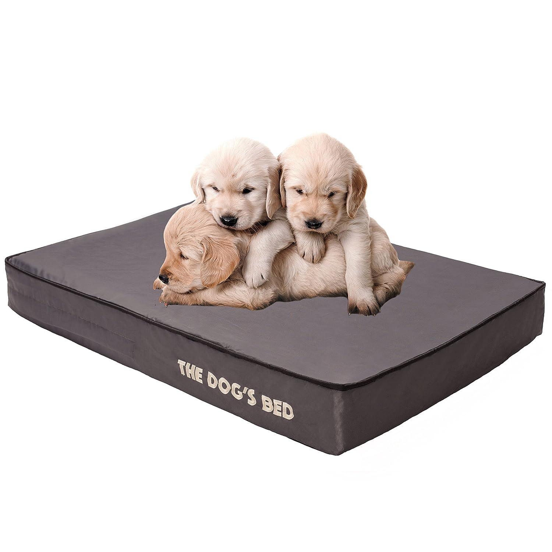 amazoncom the dogu0027s bed premium plush orthopedic waterproof memory foam dog beds 5 sizes7 colors eases pet arthritis hip dysplasia u0026 post op pain