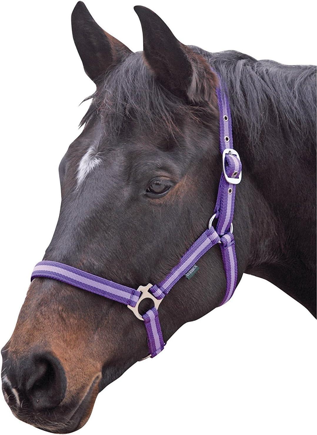 Shires WESSEX NYLON HEADCOLLAR HORSE EQUESTRIAN RIDING TACK HANDLING