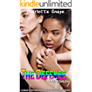 The Defense Attorney: Lesbian Contemporary and Interracial Romance (English Edition)