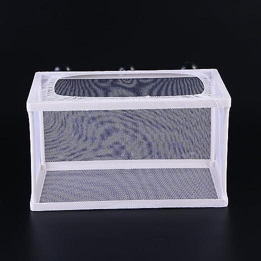 ben-gi Aislamiento Malla Caja Ventosa Dise/ño cr/ía de Peces Incubadora Acuario Neto Colgantes criadero Box
