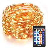 Homestarry LED String Lights 33 ft 100 LEDs Dimmable Festival Decorative Lights for Seasonal Holiday, Complete Waterproof, UL Listed( Copper Wire , Warm White )