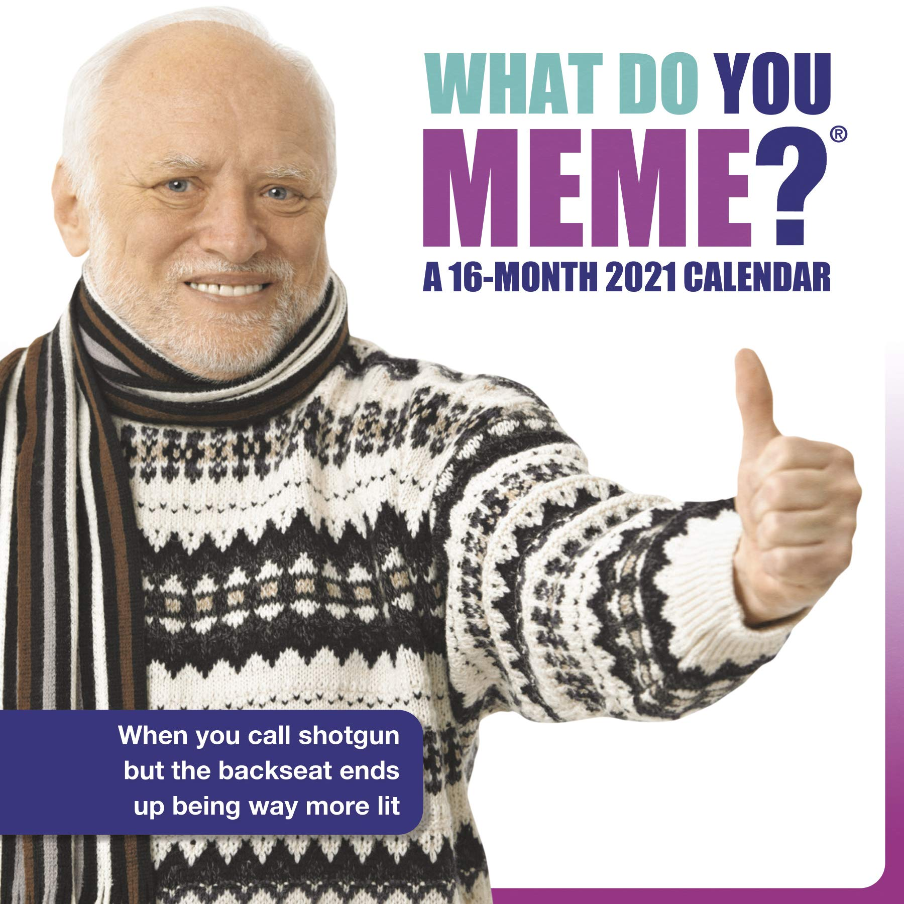 2021 Meme Calendar So Far 2021 What Do You Meme? Wall Calendar: Trends International