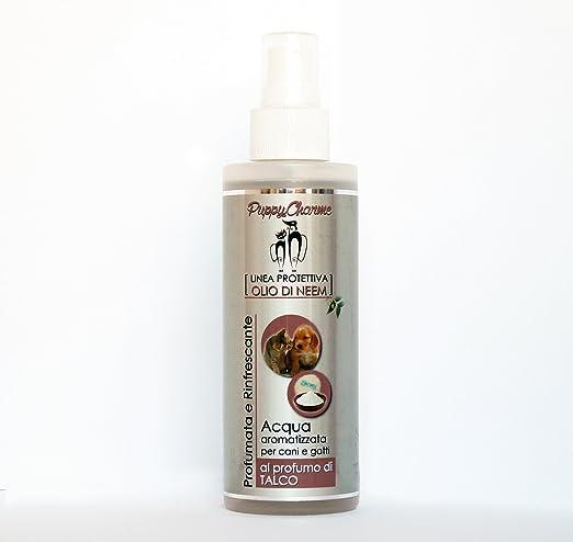 Agua perfumada con perfume de talco para perros y gatos: Amazon.es ...