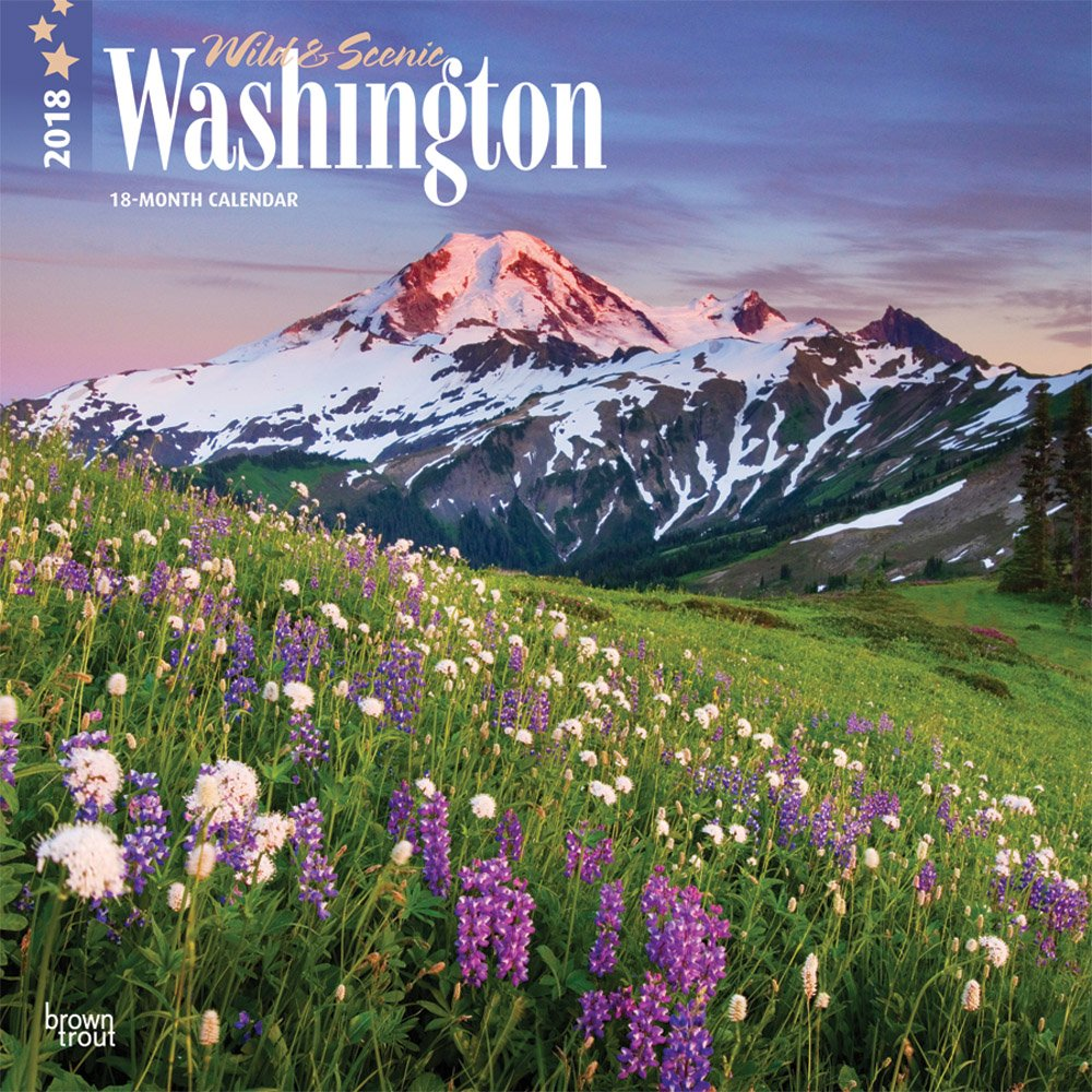Washington, Wild & Scenic 2018 12 x 12 Inch Monthly Square Wall Calendar, USA United States of America Pacific West Coast State Nature (English, French and Spanish Edition)