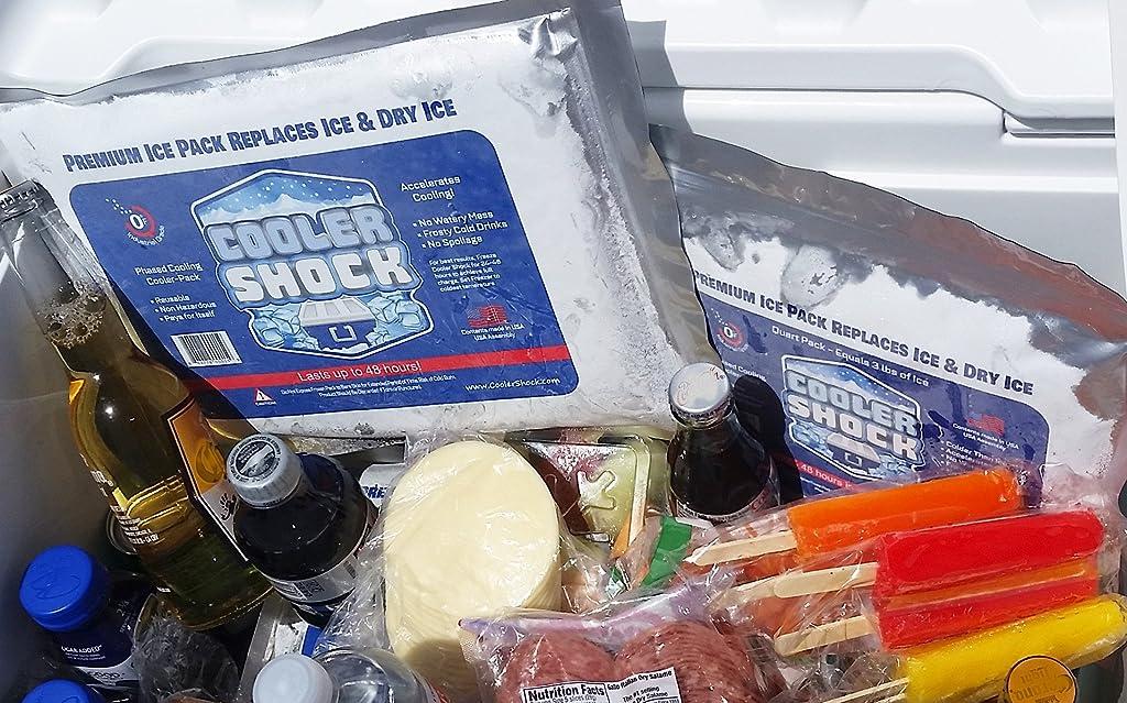 3X Lg. Zero°F Cooler Freeze Packs 10