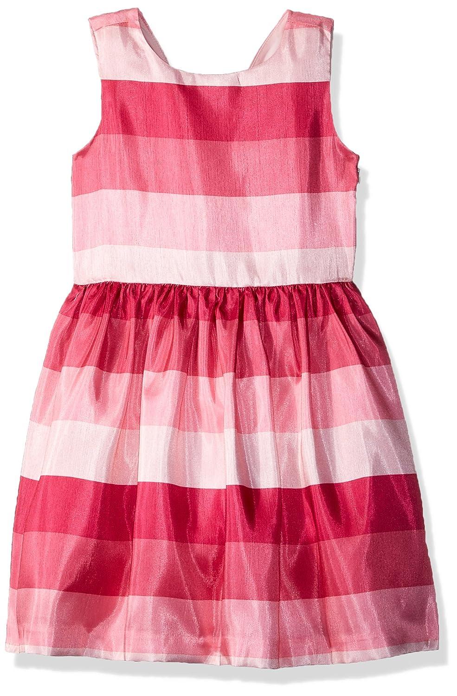 Amazon.com: Gymboree bebé niñas Sleveless Ombre vestido ...