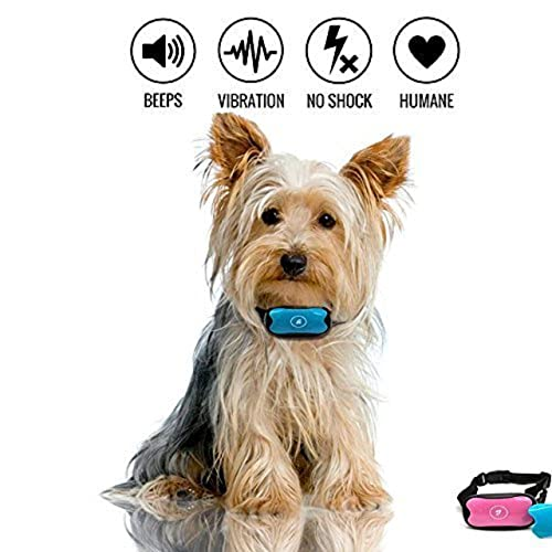 Amazon Uk Dog Training Collar