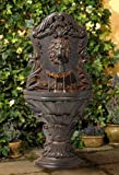 John Timberland Acanthus Antiqued Outdoor Wall