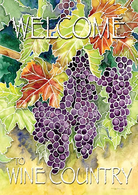 Amazon Com Toland Home Garden Vineyard Grapes Welcome To Wine