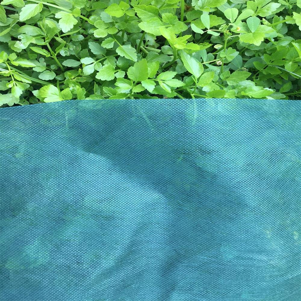 UniEco-1.5oz Floating Row Cover Mediumweight Garden Row Cover Frost Blanket for Crop 6'x100'