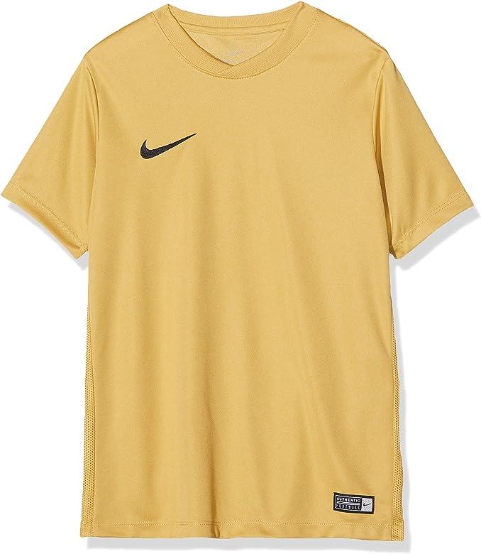 Nike SS YTH Park Vi JSY Short Sleeve Top, Niños, Marrón (Jersey ...