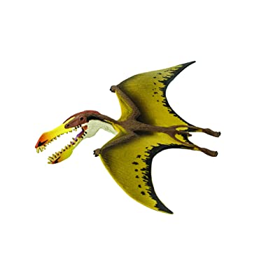 Safari Ltd Wild Safari Pterosaur: Toys & Games
