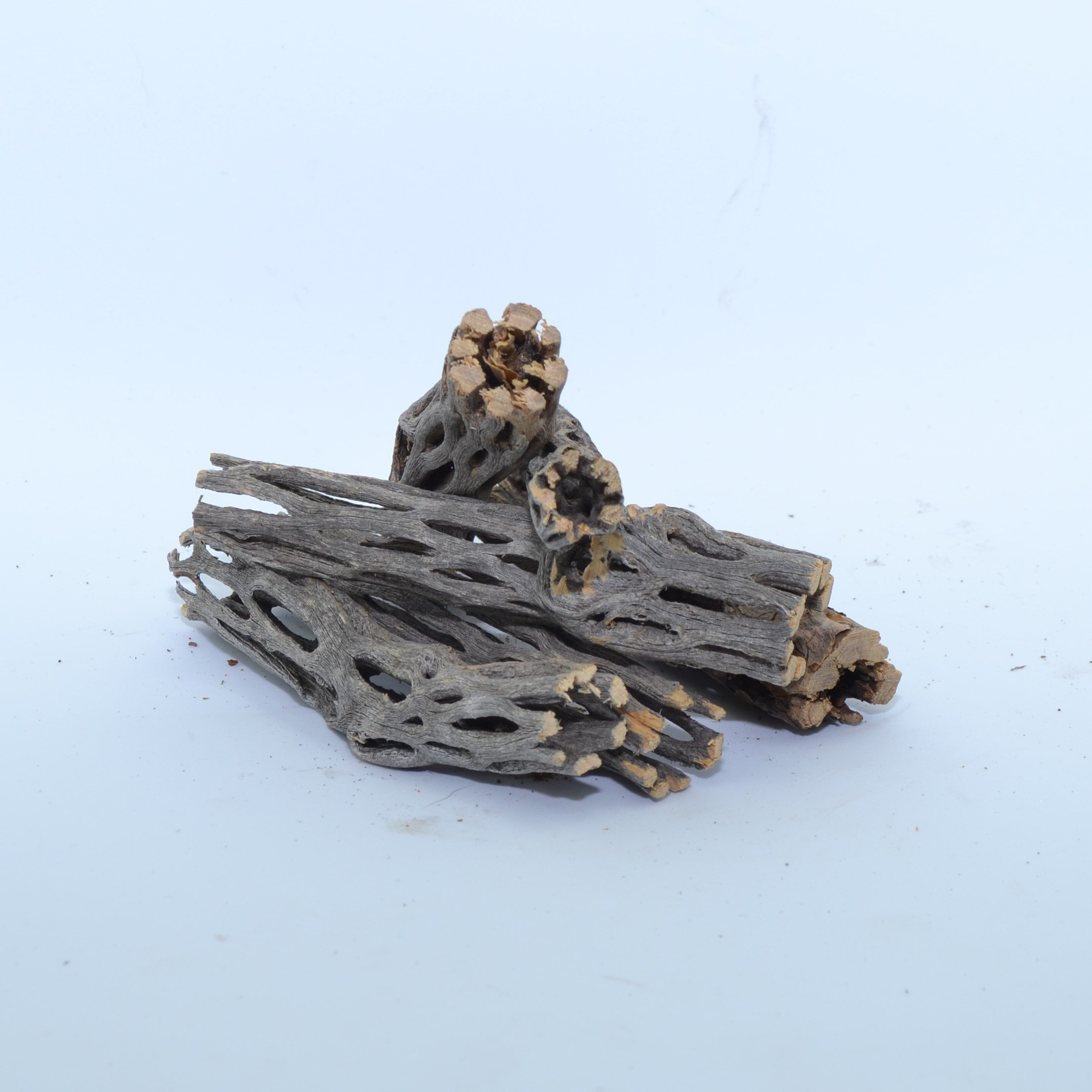 NApremium Natural Cholla Wood | 6 Pieces of 3'' Long Natural Cholla Wood for Aquarium Decoration, Hermit Crabs, Shrimp