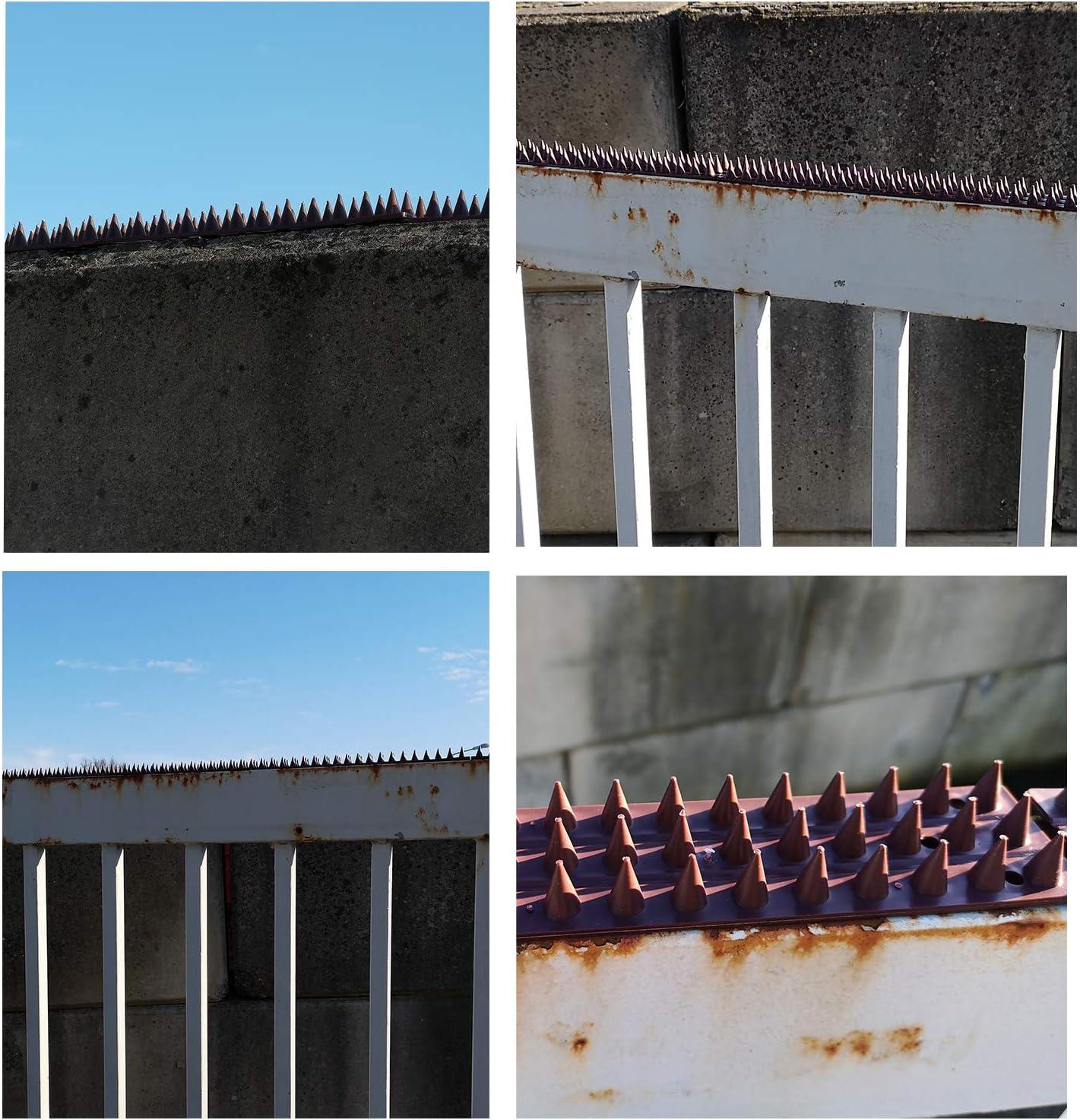 My-goodbuy24 Tierabwehr f/ür Z/äune 30 Paneele Balkon-Kunststoff-braun-je 50cm Mauern Taubenabwehr Vogebwehr Volspitzen Taubespikes Schwaenabwehr-Einbruch Kletterschutz