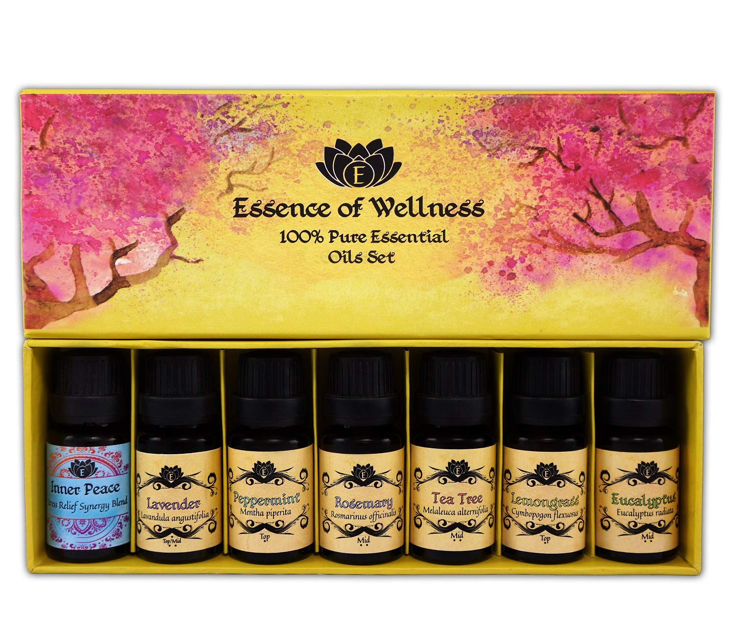 Wellness Specialized Essential Oils Gift Kit - Top 7 100% Pure Aromatherapy 10ml Starter Set - With BONUS Stress Relief Blend, Recipe eBook, Safe Dilution Chart Card, and Getting Started Guide