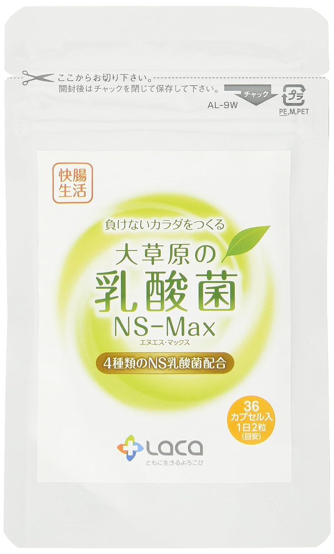 大草原の乳酸菌NS-Max(36粒)×2セット B01LAU62J6