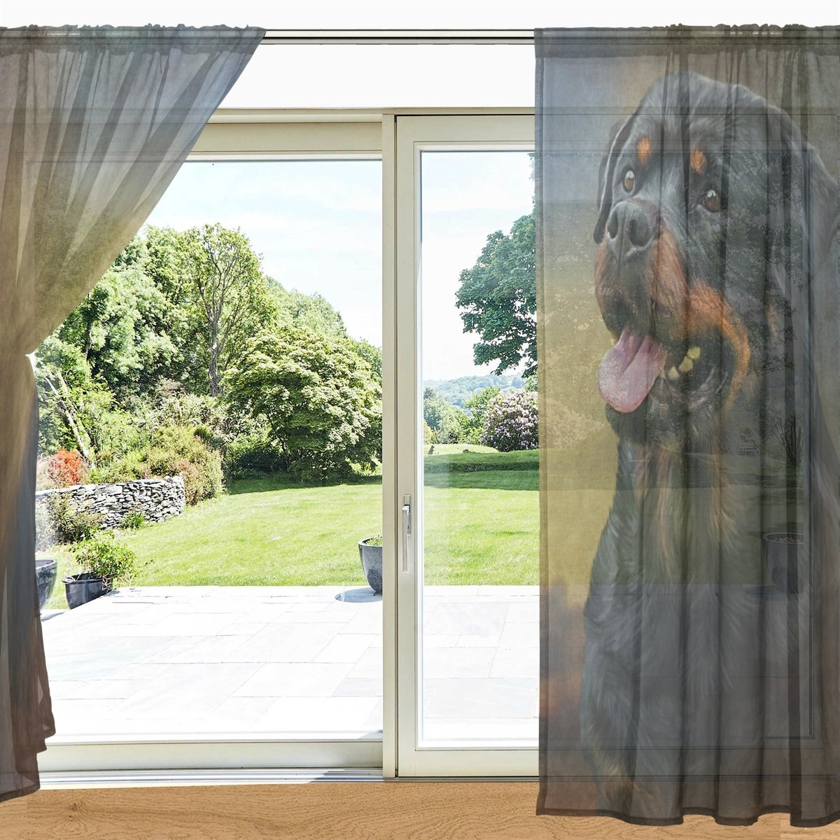 Amazon com my daily rottweiler dog printed sheer window and door curtain 2 panels 55 x 78 rod pocket panels for living room bedroom decor home
