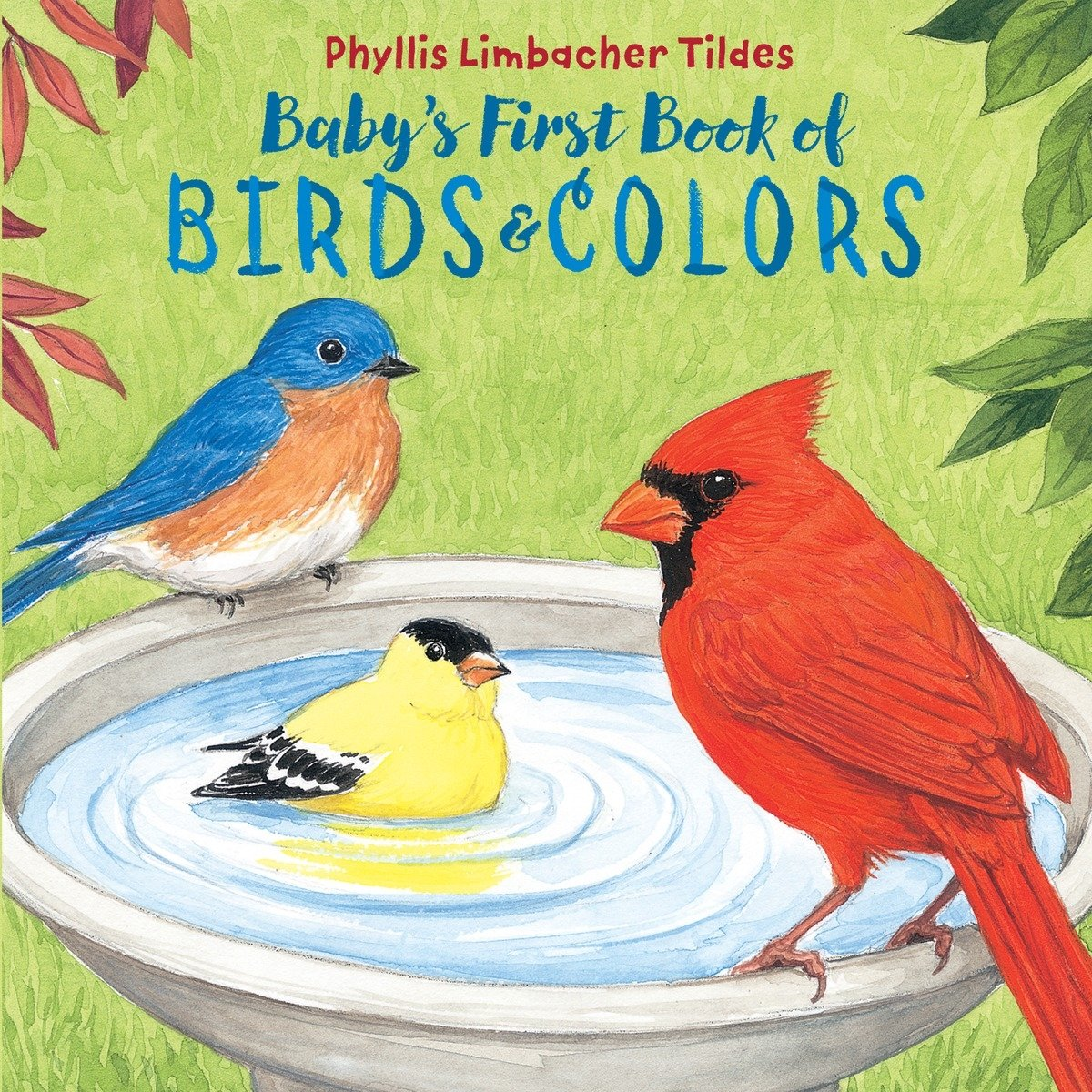 Baby\'s First Book of Birds & Colors: Phyllis Limbacher Tildes ...