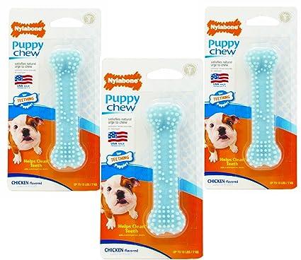 Pet Supplies Nylabone 3 Pack Of Puppy Chew Chicken Flavored