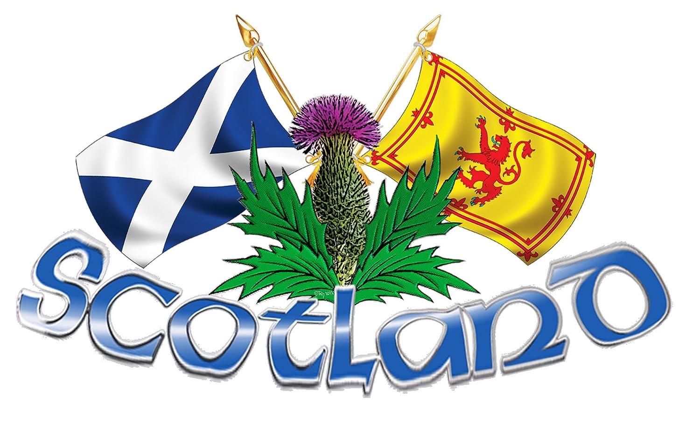 large size scotland thistle u0026 cross flags amazon co uk kitchen