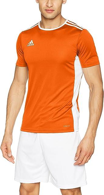 adidas Entrada 18 JSY Teamtrikot - Camiseta Niños: Amazon.es ...