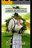 Amish Orchard Love: Amish Romance