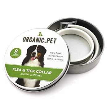 Amazon.com: Collar orgánico para prevención de pulgas y ...