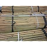 25 Stück Bambusstäbe - Bambusrohre 152 cm lang/ 15-17 mm dick