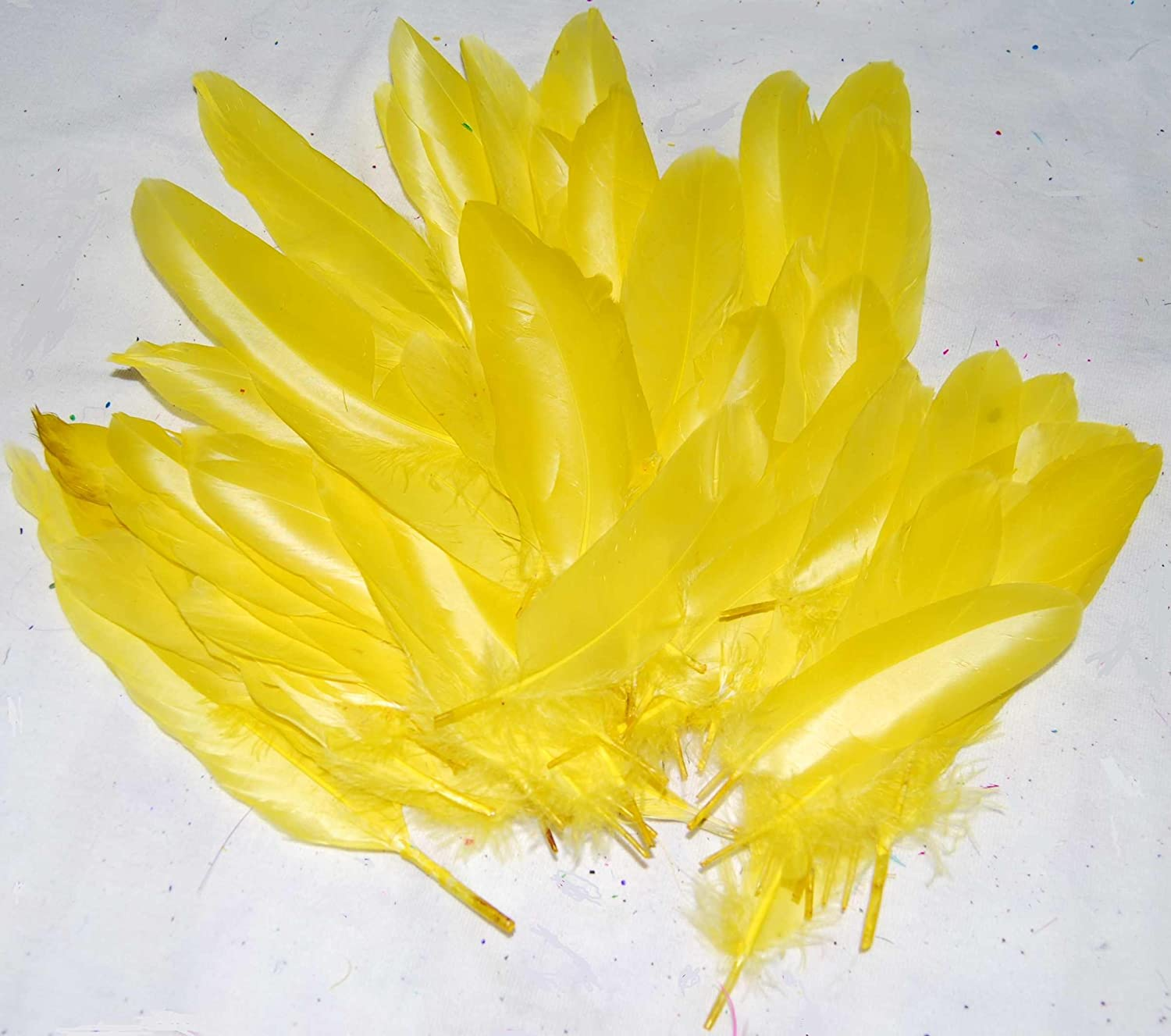 Average of 100 Feathers in Total For Scrapbooking and Crafting Bright Yellow 2 Packs Quill Craft Feathers